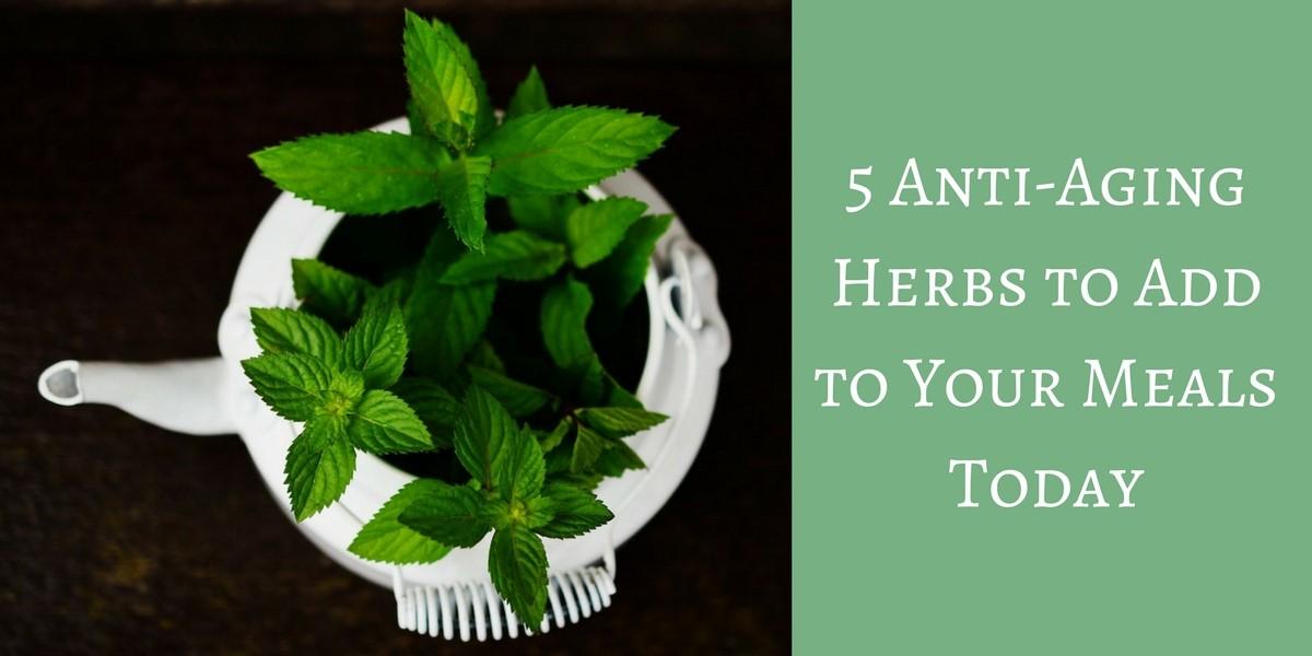 Anti aging herbs header