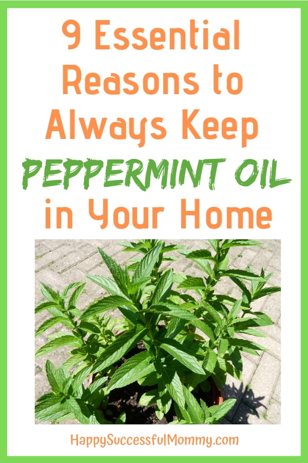 Peppermint Oil Pin
