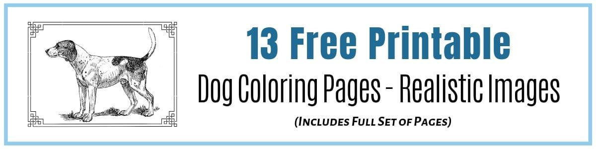 Dog Coloring Pages Realistic Images to print and enjoy at home, work or school